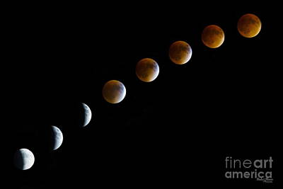 Super Blood Moon Time Lapse Art Print