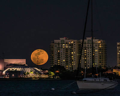 Photograph - Super Blue Blood Moon Over Sarasota by Damon Powers