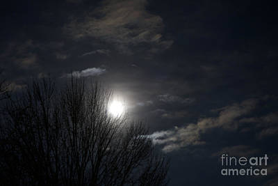Photograph - Super Blue Moon by Ann Horn