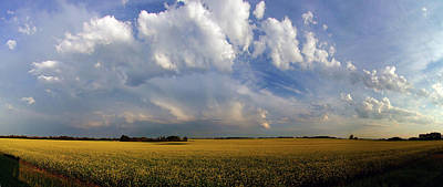 Photograph - Super Cell Over The Canola by Philip Rispin