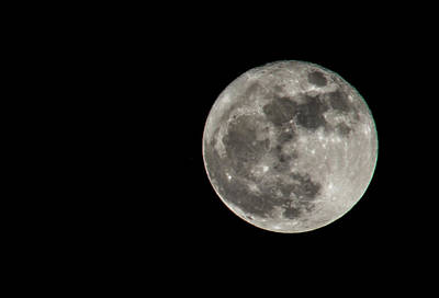 Photograph - Super Moon 11-14-2016 by Renny Spencer