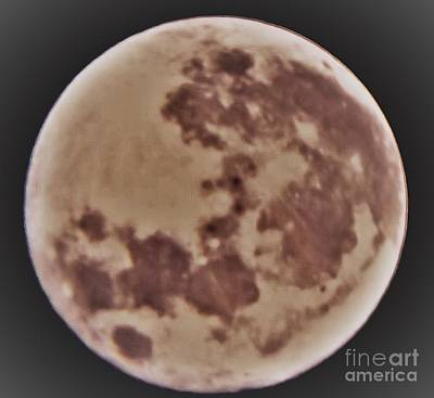 Photograph - Super Moon 2 by John Williams