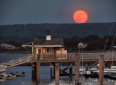 Photograph - Super Moon 2013 by Janice Drew