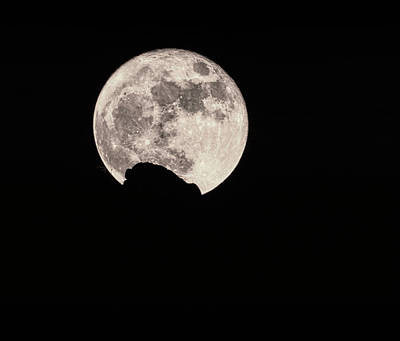 Photograph - Super Moon 2016  by Saija Lehtonen