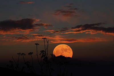 Photograph - Super Moon And Silhouettes by John Haldane