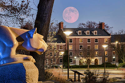 Photograph - Super Moon At The Lion Shrine by Rusty Glessner