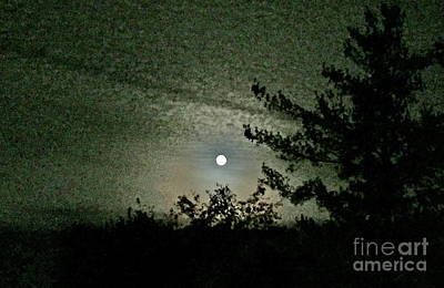 Photograph - Super Moon Colors by Barbara Plattenburg