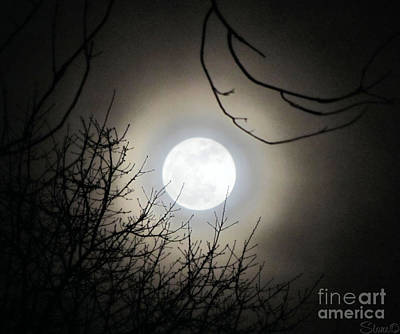 Photograph - Super Moon  by September  Stone