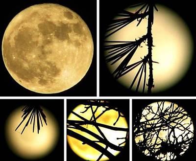 Photograph - Super Moon Follies by Chris Dunn