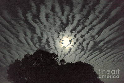 Photograph - Super Moon by Irma BACKELANT GALLERIES