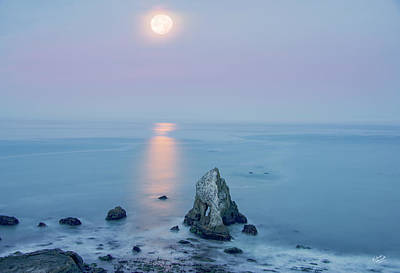 Photograph - Super Moon Light by Leland D Howard