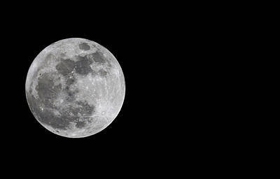 Photograph - Super Moon by Living Color Photography Lorraine Lynch