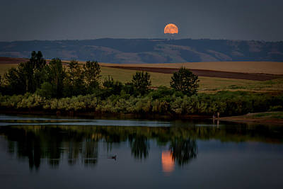 Photograph - Super Moon Over Mann Lake by Brad Stinson