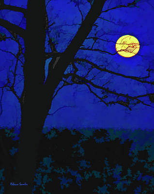 Photograph - Super Moon by Rebecca Samler