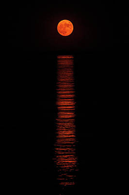 Photograph - Super Moon Reflection by Jean-Pierre Ducondi