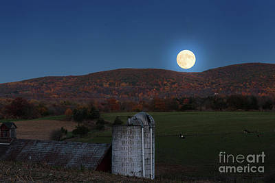 Photograph - Super Moon Rising by Nicki McManus