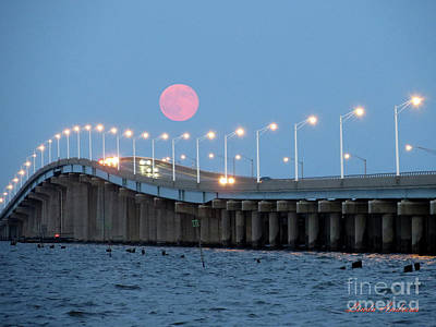 Photograph - Super Moon  by Robert Henne
