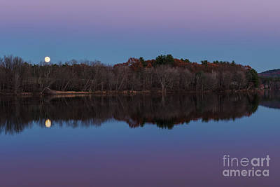 Photograph - Super Moon by Sharon Seaward