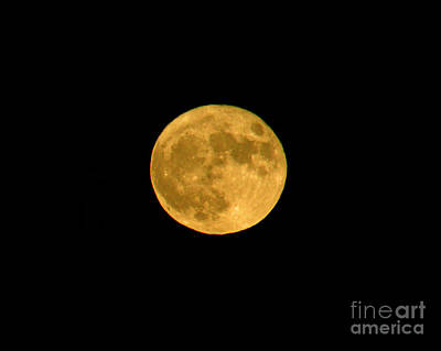 Photograph - Super Moonrise by Alana Ranney