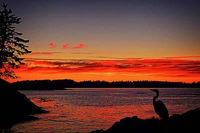 Digital Art - Super Natural British Columbia Sunset by Richard Farrington
