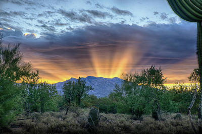 Photograph - Super Rays by Charlie Alolkoy