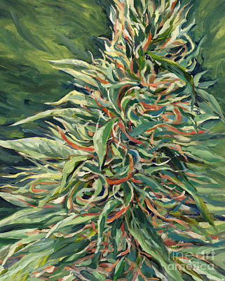 Mary Jane Painting - Super Silver Haze by Mary Jane