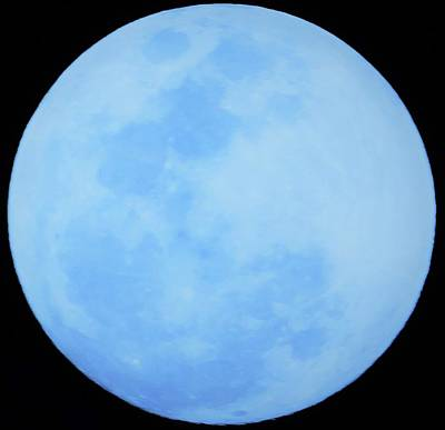 Photograph - Super Smurfy Blue Moon by Brandy Stark