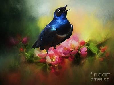 Digital Art - Superb Starling by Suzanne Handel