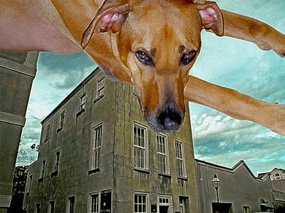 Ridgeback Digital Art - Superdogs Leap Of Faith   by Lynda Lehmann
