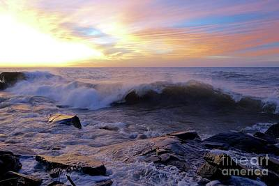 Photograph - Superior Curl by Sandra Updyke