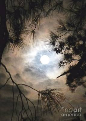Photograph - Supermoon November 14 2016 by Jean Wright