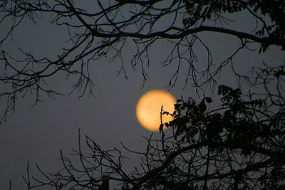 Photograph - Supermoon 7 A M by Kathryn Meyer