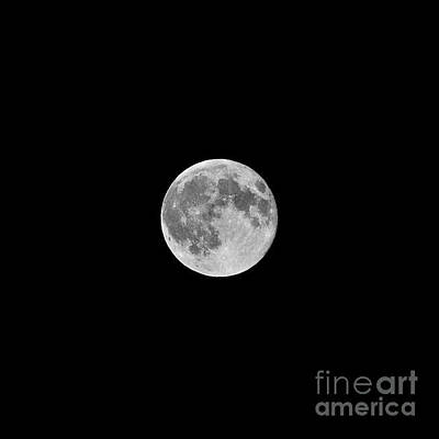 Photograph - Supermoon by Bridgette Gomes