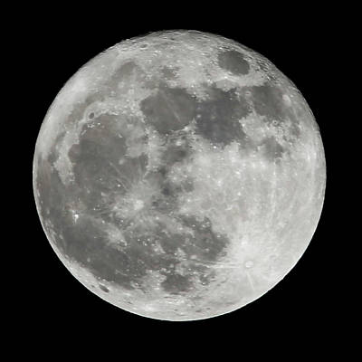 Photograph - Supermoon by David Stasiak