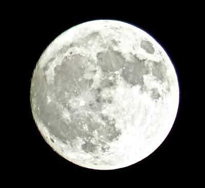 Photograph - Supermoon  by Debra MacNealy