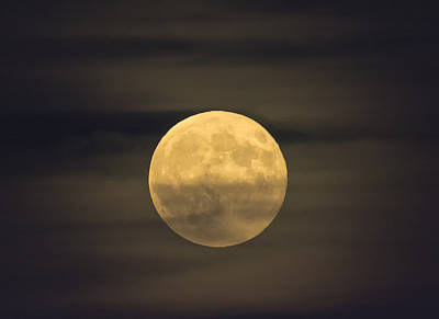 Photograph - Supermoon Glow by Loree Johnson