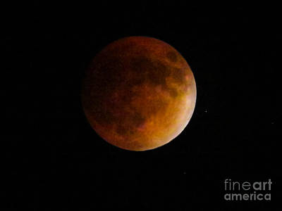 Moonscape Photograph - Supermoon Lunar Eclipse by Zina Stromberg