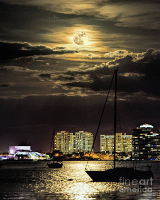 Photograph - Supermoon Over Sarasota by Damon Powers