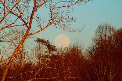 Photograph - Supermoon Rising 1 by Kathryn Meyer