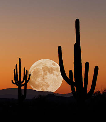 Photograph - Supermoon Setting by Trish VanHousen