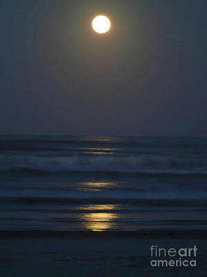 Supermoon Shines On The Atlantic Art Print by D Hackett