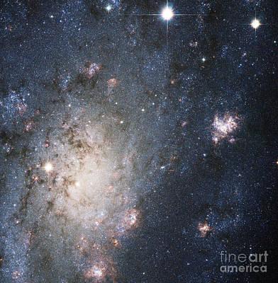Supernovae Photograph - Supernova 2004dj, Outskirts Of Ngc 2403 by Science Source