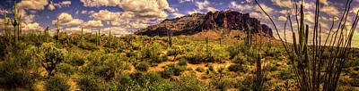 Superstition Mountain And Wilderness Art Print