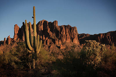 Photograph - Superstition Mountain by Bud Simpson