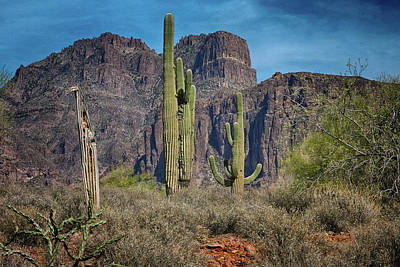 Photograph - Superstition Mountain With Cactus by Grace Dillon