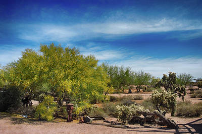 Photograph - Superstition Mountains by Grace Dillon