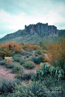 Photograph - Superstition Mountains by Jill Battaglia