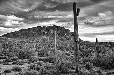 Photograph - Superstition Serenity In Black And White  by Saija Lehtonen