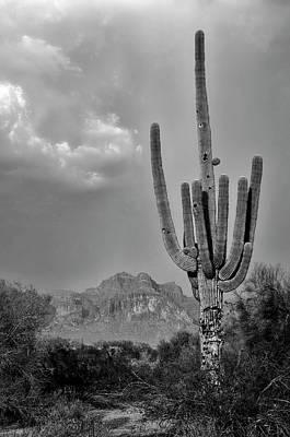 Photograph - Superstitions On The Horizon by Saija Lehtonen