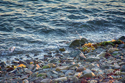 Photograph - Surf And Rocks by Ruth H Curtis
